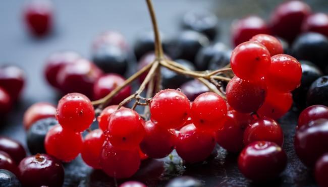 cranberry beeren gesund chicnews. Black Bedroom Furniture Sets. Home Design Ideas
