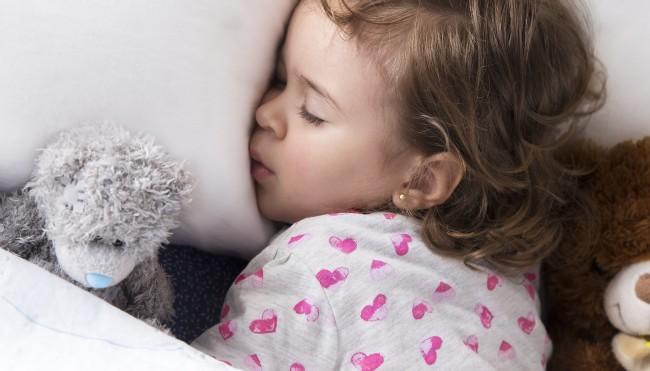 stiftung warentest krebserregende stoffe in kuscheltieren gesundheit der kinder. Black Bedroom Furniture Sets. Home Design Ideas