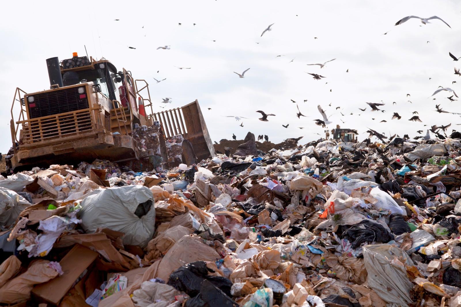 So Geht Die Welt Mit Ihrem M 252 Ll Um Umwelt