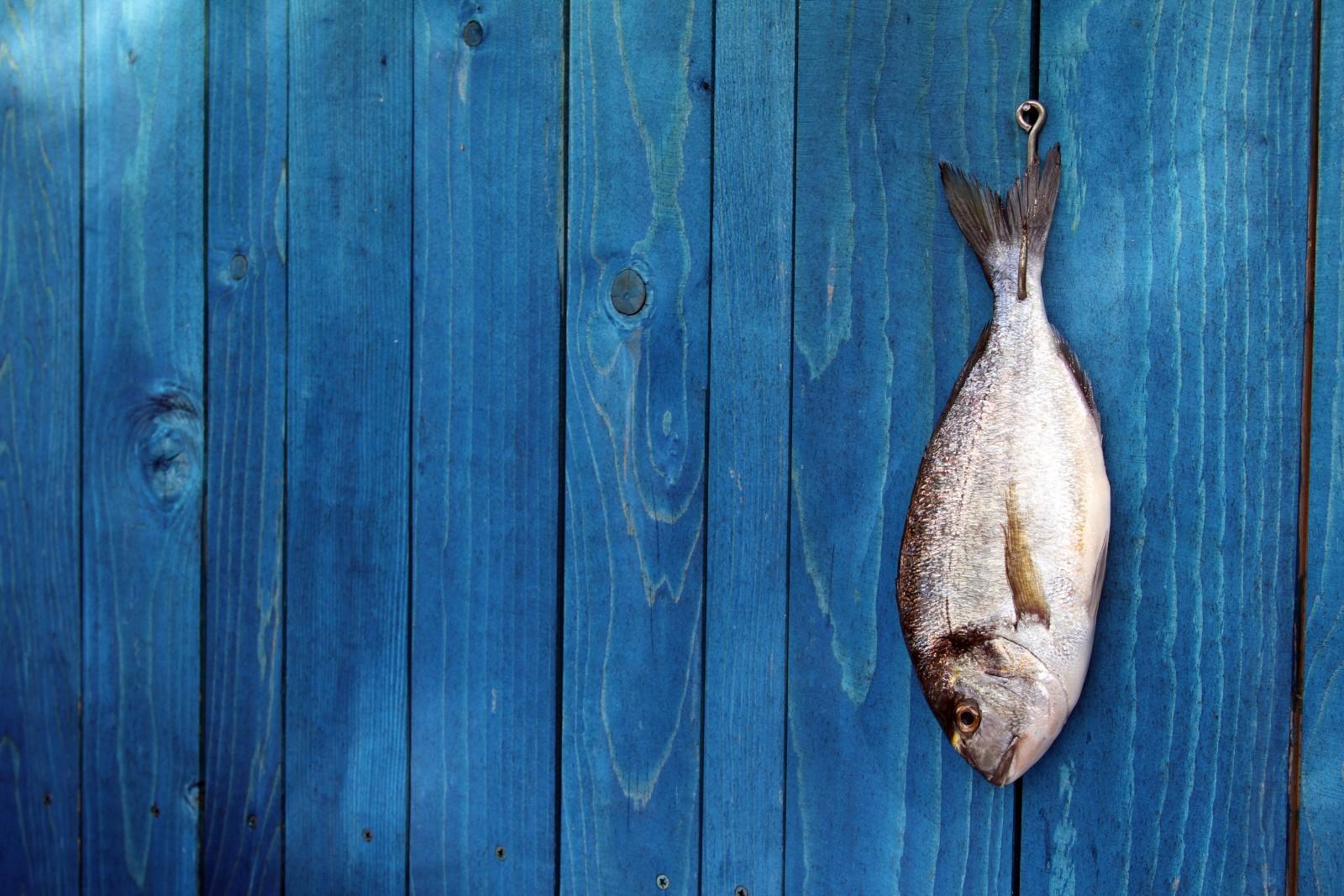 nachhaltig fisch essen geht das berhaupt berfischung codecheck info. Black Bedroom Furniture Sets. Home Design Ideas