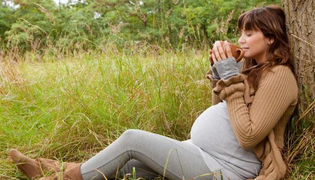 Schwangere trinkt Tee