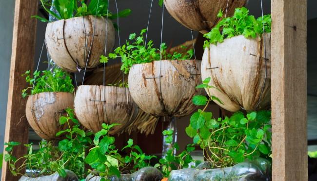 g rtnern auf dem balkon so klappt s urban gardening codecheck info. Black Bedroom Furniture Sets. Home Design Ideas