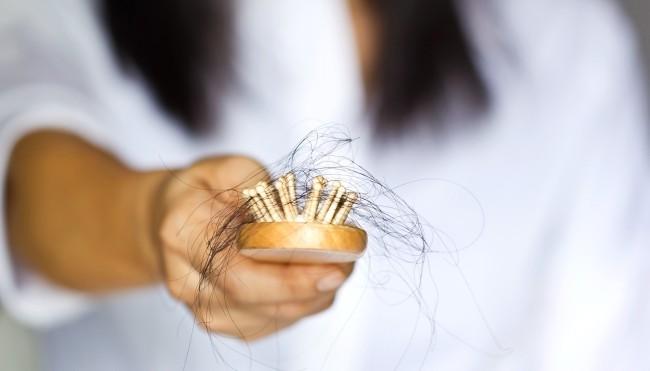 Der Haarausfall des Haares vom Honig