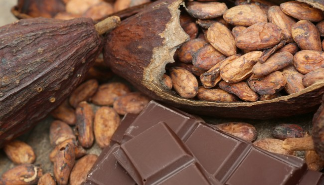 welt ohne schokolade kakao notstand droht durch d rren st rme krankheiten. Black Bedroom Furniture Sets. Home Design Ideas