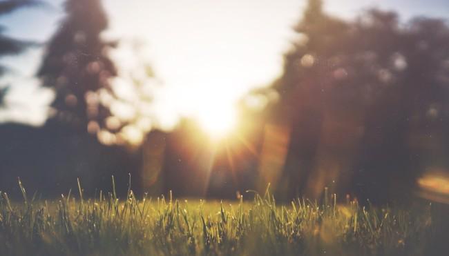 15 Ideen, wie Du im Alltag nachhaltiger lebst - Umdenken ... 38c05103dd
