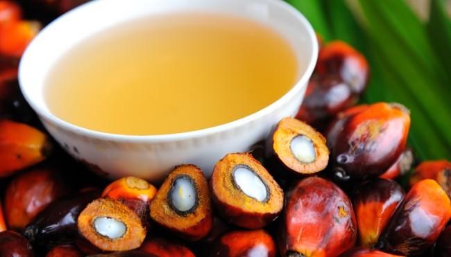 Ferrero Palmöl