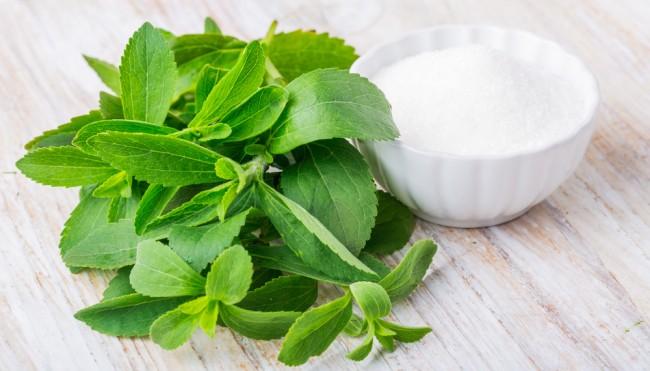 macht stevia fett